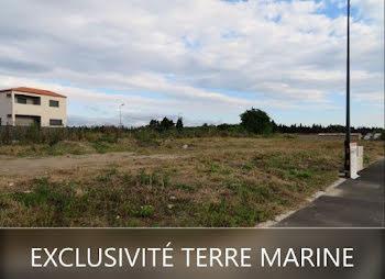 terrain à Villelongue-de-la-Salanque (66)