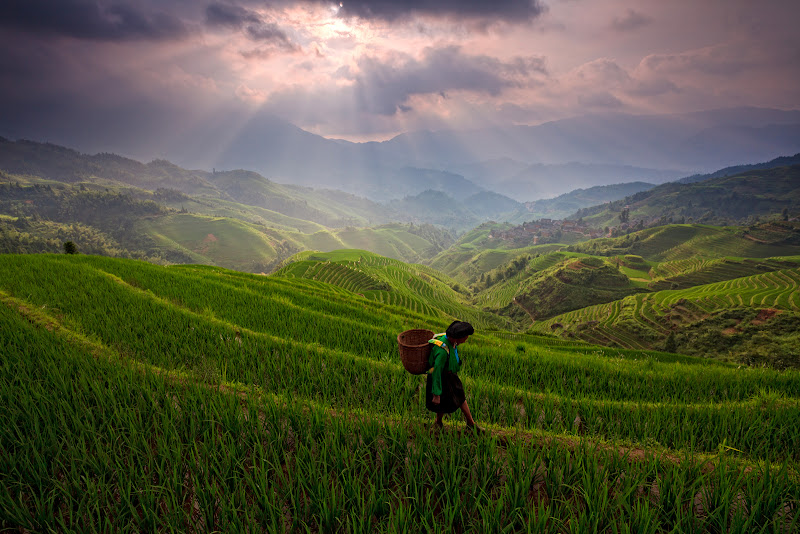 Photo: Longji Rice Terrace