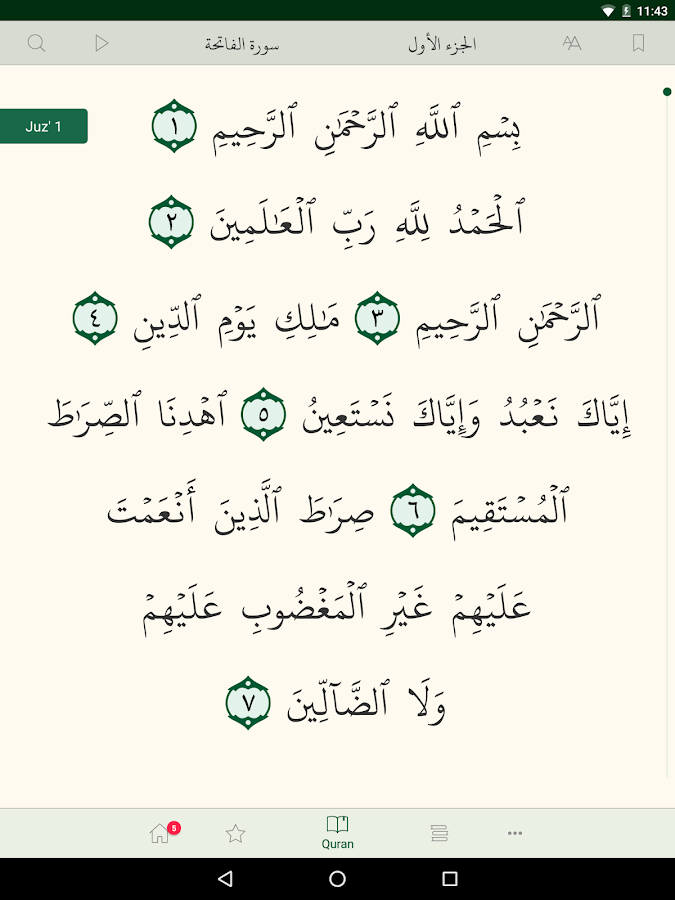Bayan Quran- screenshot