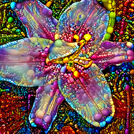 Lily multicolored by Cassy 67 - Digital Art Things ( digital, flowers, abstract art, abstract, deepdream, flower, digital art, classic, modern, trendy, light, lily, colorful, energy )