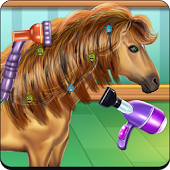 Horse Hair Salon