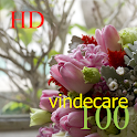 100 vindecare HD icon