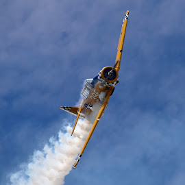 Aerial Ballet by Greg Harrison - Transportation Airplanes ( naval aircraft, snj, navy trainer, air show, quad city air show )