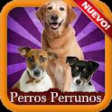 Perros razas perrunas icon