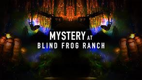 Mystery at Blind Frog Ranch thumbnail