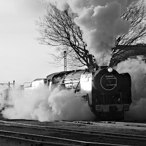 Reefsteamers by Tony Wilson - Transportation Trains ( germiston, johannesburg, steam train, south africa, train, reefsteamers )