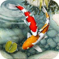 Download Fish Live Wallpaper Free Koi Fish Backgrounds Hd Free For Android Fish Live Wallpaper Free Koi Fish Backgrounds Hd Apk Download Steprimo Com
