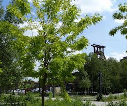 Photo: Zollverein