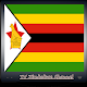 TV Zimbabwe Channel Info