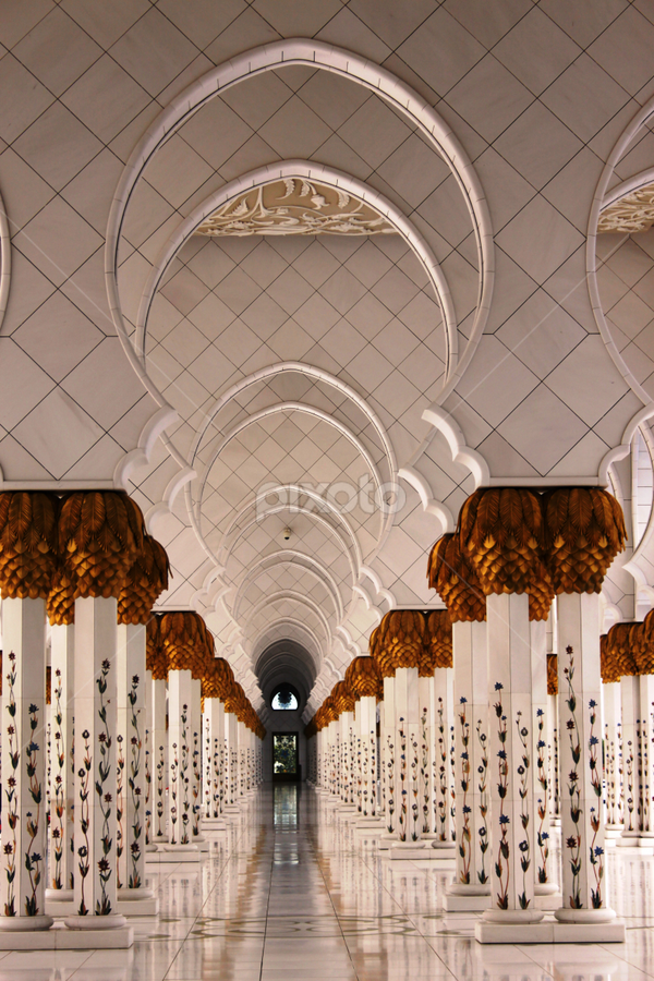 Peace by Lynn Morley - Buildings & Architecture Places of Worship ( pwcstilllife-dq, mosque, white, abu dhabi, beauty )