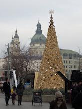 Photo: A Hello Wood monumentális Adományfát állított az Erzsébet téren