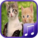 Cat Sounds – Cat Noises App icon