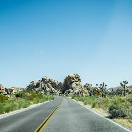 Lost On A Desert Road by T Sco - Transportation Roads ( joshua tree, road, california, calif, desert, travel, highway, state park, lines, park, ca,  )