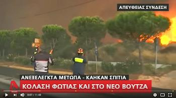 Wald in Flammen. Feuerwehrleute.