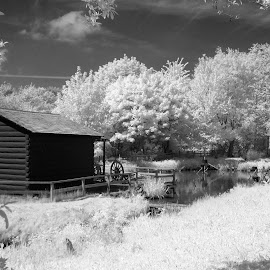 Infrared landscape  by Heather Catherine - Black & White Landscapes ( infrared, washington, landscape )