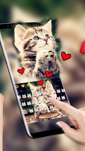 Cat Keyboard Cute Kitten Theme for PC