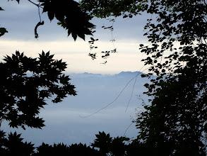 樹間から三ツ峠山方面