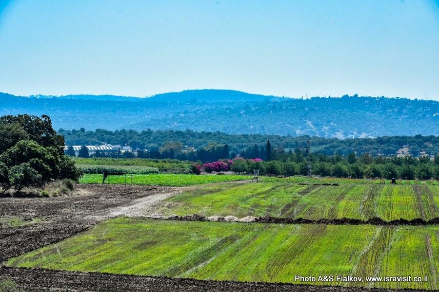 Галилейский пейзаж. Экскурсия в Израиле.