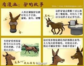 Photo: 驴的故事