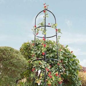 Suport metalic de gradina pentru flori cataratoare, verde inchis, 195x38 cm