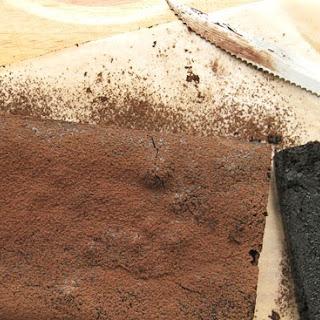 Decadent Cocoa Terrine Recipe