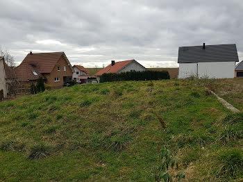 terrain à Oberlauterbach (67)