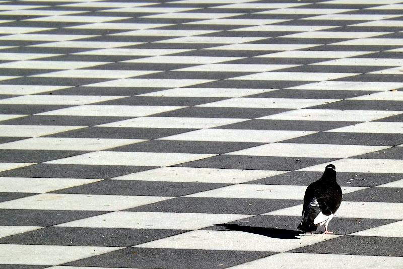 pavimentazione simmetrica con intruso di pilotto