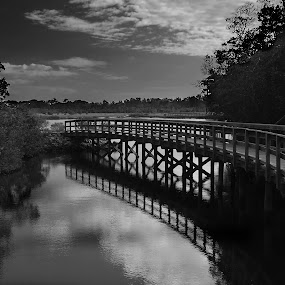 Bridge Over The Water by Jeremy Barton - Landscapes Waterscapes