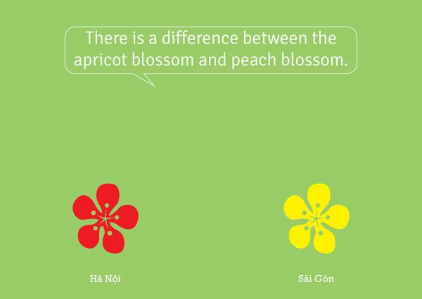 Thú vị bộ ảnh so sánh vui sự khác nhau giữa Hà Nội và Sài Gòn 4