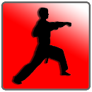 How To Do Karate v 4.1 app icon