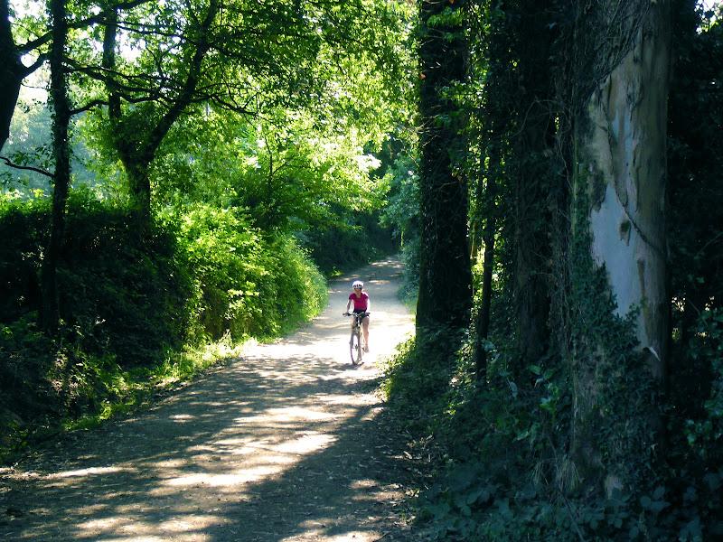 Una pedalata nel bosco di Julia982