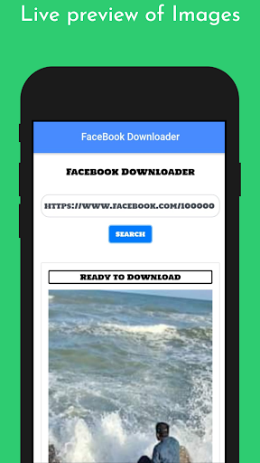 FBGrabber screenshot 1