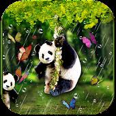 Funny Panda Live Wallpaper