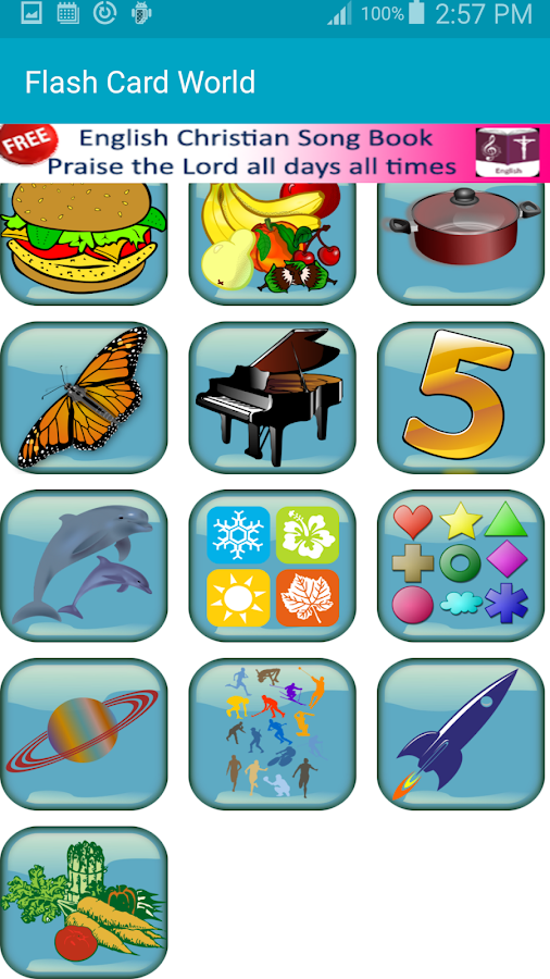 FlashCard World- screenshot