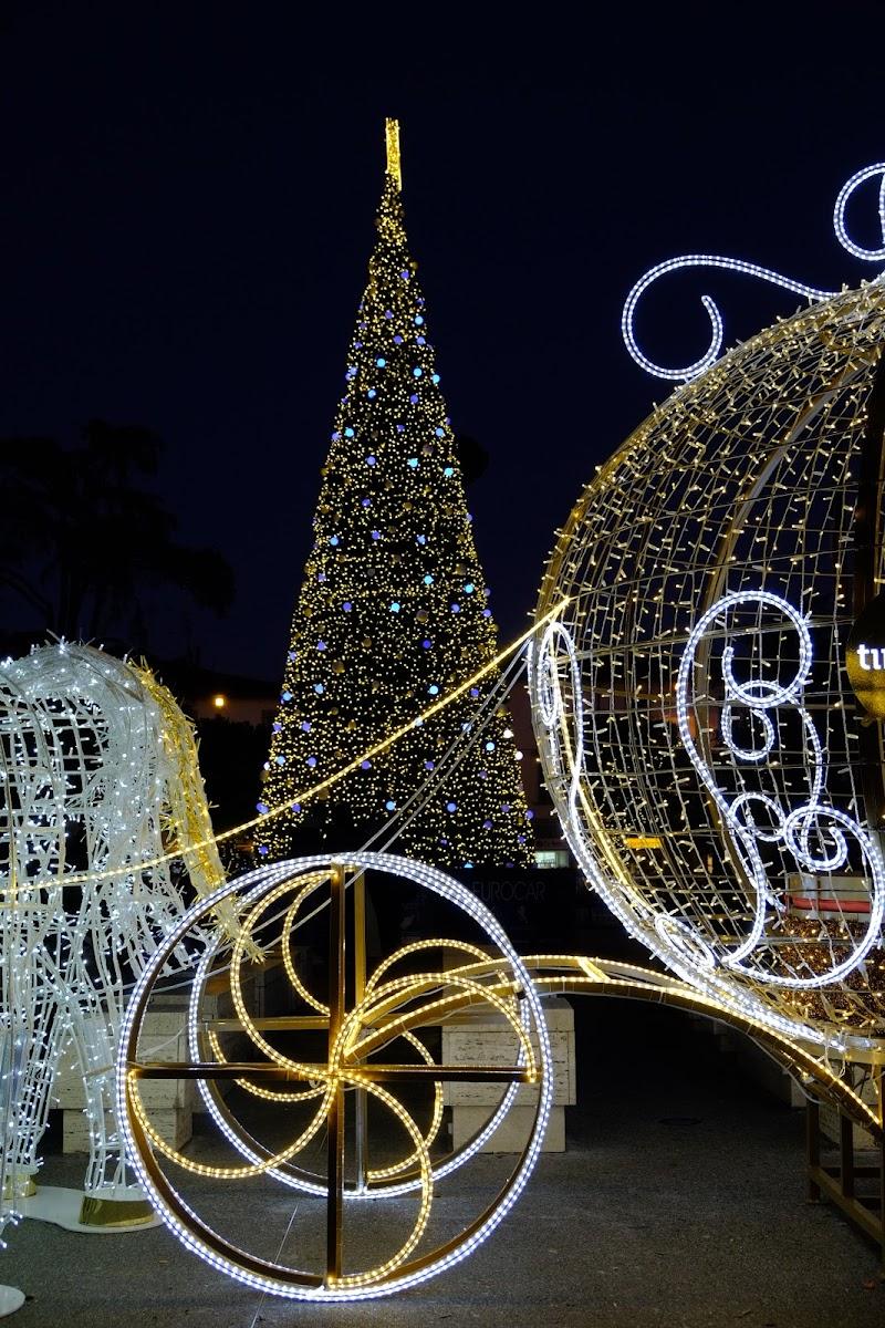 Il Natale quando arriva, arriva (cit) di Andri55