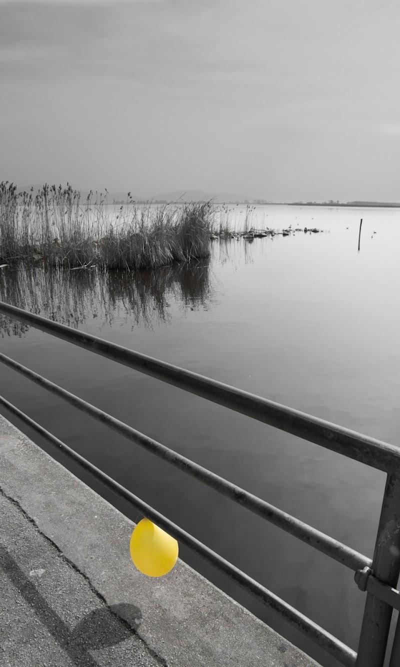 Yellow balloon di MP75