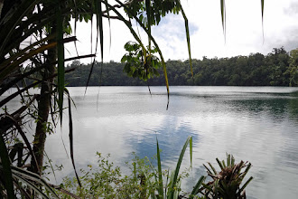 Photo: Lake Eacham. A walk all around the lake takes about 1.5 hrs- canopied walkway, rain forest greenery and birds galore. So quiet and restful.