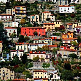 The Grid by Francis Xavier Camilleri - City,  Street & Park  Vistas
