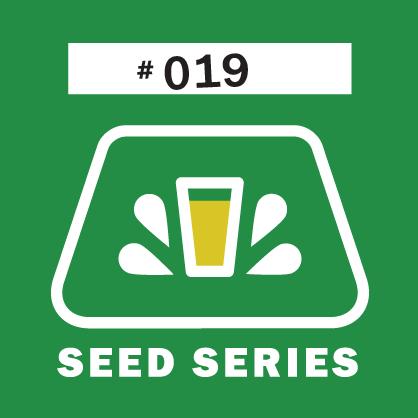 Logo of Fernson Seed Series #019