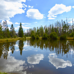 Lake Reflections by Kerry Demandante - Landscapes Waterscapes (  )
