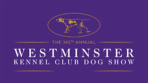 145th Westminster Kennel Club Dog Show Highlight Show thumbnail