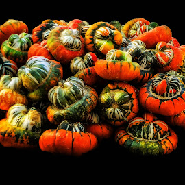 Many Pies Comeing by Dave Walters - Food & Drink Fruits & Vegetables ( nature, artistic, lumix fz2500, pumpkin, colors,  )