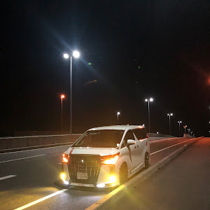 アルファード GGH30W SC 2018年9月22日納車のカスタム事例画像 【GR】ごじゃっぺレーシング(しんちゃん)さんの2020年03月25日02:00の投稿