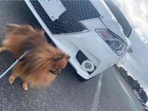 クラウンアスリート AWS211 ハイブリッド アスリートS 4WDのカスタム事例画像 マジックガール♂さんの2020年02月24日11:47の投稿
