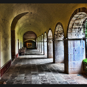 Zacatecas, Mexico  by Jim Knoch - Buildings & Architecture Architectural Detail