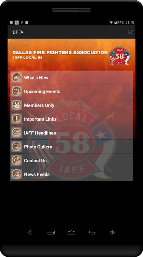 DFFA- screenshot
