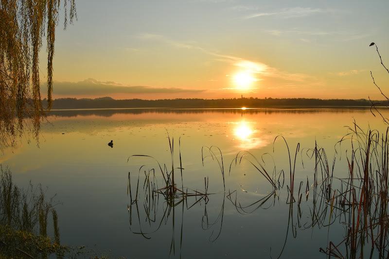 Il tramonto si specchia di laura62