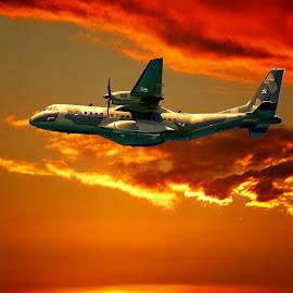 telaviv by Catalino Adolfo   Jr. - Transportation Airplanes ( transportation, airplanes )