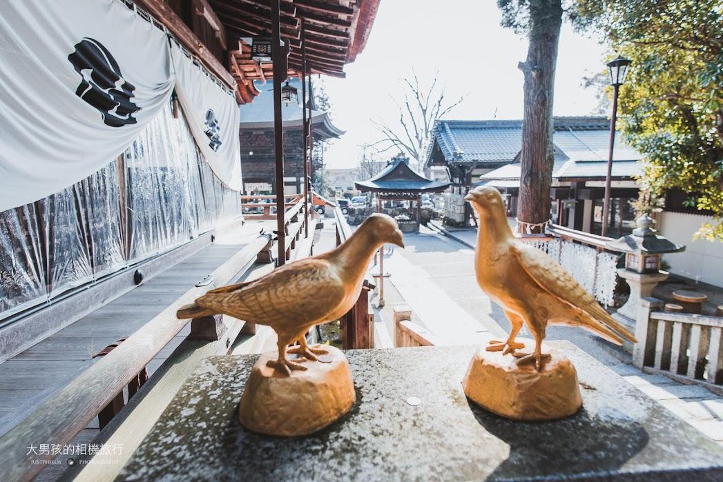 很多地方可見成對的金色鴿子。