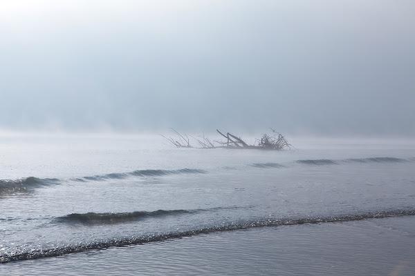 Alba invernale sul delta del Po di FrancescoPaolo